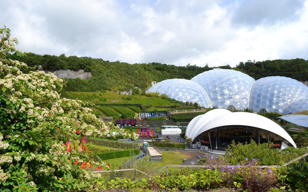 Eden Project Virtual Community Camp March 2021